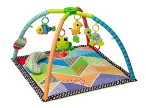 The Infantino Pond Pals Twist and Fold Activity Gym